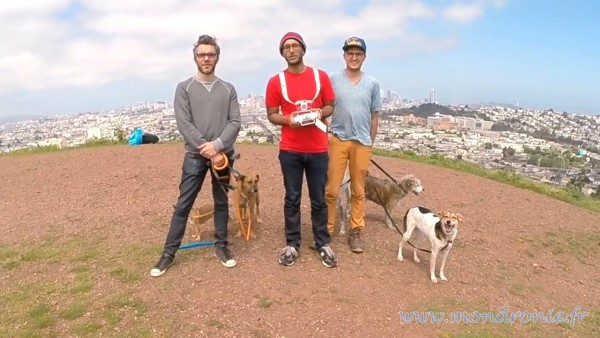 dronie colinne avec chiens